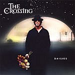 The Crossing Daisies