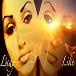 Lady Like Falling Star (Single)