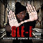 Ole-E Kuntry Town Tunes (Volume 2)