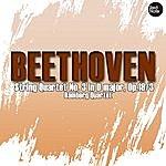 Bamberg Trio Beethoven: String Quartet No. 3 In D Major, Op.18/3