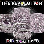 Revolution Did You Ever