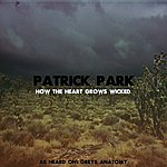 Patrick Park How The Heart Grows Wicked (From Greys Anatomy) (Single)