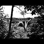 John Danley Birdsong Hollow - Single
