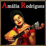 Amália Rodrigues Vintage Music No. 65 - Lp: Amália Rodigues