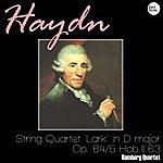 Bamberg Trio Haydn: String Quartet 'lark' In D Major, Op. 64/5 Hob.iii:63