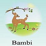 R.P. Bambi