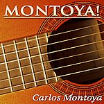 Carlos Montoya Montoya!