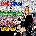 Honey Blo Sunshine Bagpipe Funk (Single)