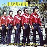 Los Jilgueros Del Arroyo Estrellita Marinera