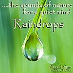 David Sun Raindrops (The Sounds Of Nature For A Quiet Mind)
