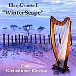 "Cindy Kleinstuber Blevins Harpcentric I ""winterscape"""