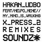 Hakan Lidbo My Mind Is Walking