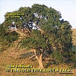 Mike Johnson If This Old Tree Could Talk (Single)