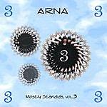 Arna Mostly Standids 3