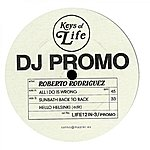 Roberto Rodriguez All I Do Is Wrong / Dj Promo