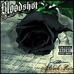 Bloodshot The Black Rose