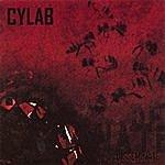 Cylab Disseminate