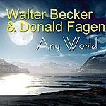 Donald Fagen Any World