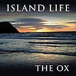 Ox Island Life