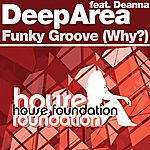 Deep Area Funky Groove (Why?) 2003 Mixes