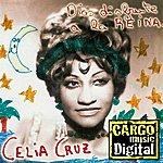 Celia Cruz Dios Disfrute A La Reina