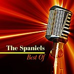 The Spaniels Best Of