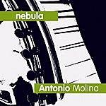 Antonio Molina Nebula