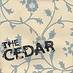 Cedar I'm Always Explaining To Mom How It's Different Here