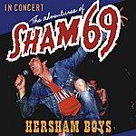 Sham 69 The Adventures Of Sham 69 Hersham Boys