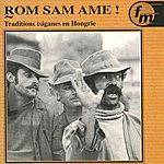 Michael Stewart Rom Sam Ame ! Traditions Tsiganes En Hongrie