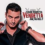 David Vendetta Can You Feel It (3-Track Maxi-Single)