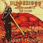 Gary Thomas Didgeridoo