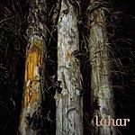 Lahar Meanders