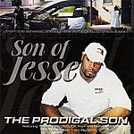 Son Of Jesse The Prodigal Son