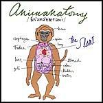 Slant Animanatomy