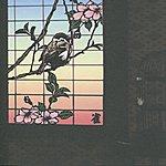 Merzbow 13 Japanese Birds, Vol. 1