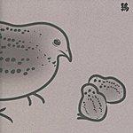 Merzbow 13 Japanese Birds, Vol. 5