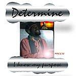 Determine I Know My Purpose - Single