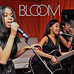 Bloom This Is The Life (Single)