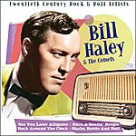 Bill Haley & His Comets See You Later Alligator