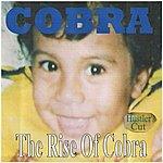 Cobra The Rise Of Cobra (Hustler's Cut)