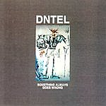 Dntel Something Always Goes Wrong
