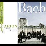 Jaap Ter Linden Bach, J.s. Suites / Concertos