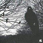 Merzbow 13 Japanese Birds, Vol. 4