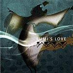 Sina True Love Rumi