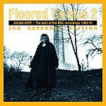 Julian Cope Floored Genius Vol. 2 - Expanded Edition