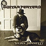 Brian Donnelly Guitarpentero