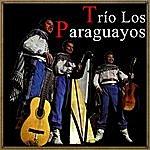 Los Paraguayos Vintage Music No. 104 - Lp: Trío Los Paraguayos