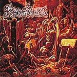 Merciless The Awakening