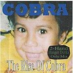 Cobra The Rise Of Cobra (2-Hand Hanger Dunks Only Mix)
